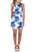 Blue Flower Print Sleeveless Dress