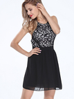 Black Halter Neck Lace Skater Mini Dress