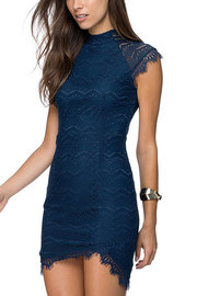 Bodycon Navy Delicate Lace Dress
