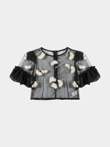 Black Mesh Sheer Crop Top With Embroidery