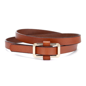 Brown Gold-tone Hardware Belt