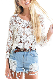 Hollow Out Lace Crop Top in White