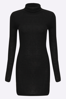Black Sexy Bodycon Rollneck Long Sleeves Mini Dress
