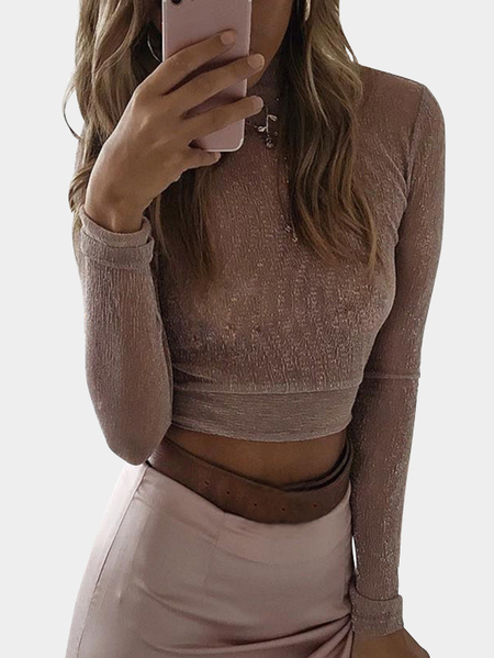 Dust Pink Sheer Mesh Shinny High Neck Crop Top