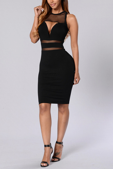 Sleeveless Cut Design Mesh Panel Details Black Mini Dress