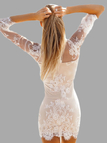 See Through V Neck Long Sleeve Lace Dress