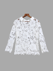 Lace Design Hollow Out Lapel Blouse with 3/4 Length Sleeves
