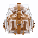 Transparent Backpack in Brown