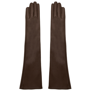 Long Leather Gloves in Blown